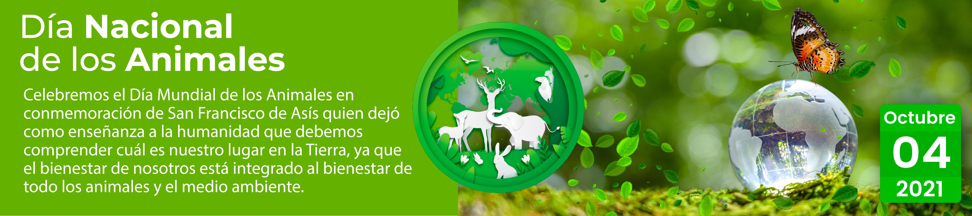Día internacional del hábitat